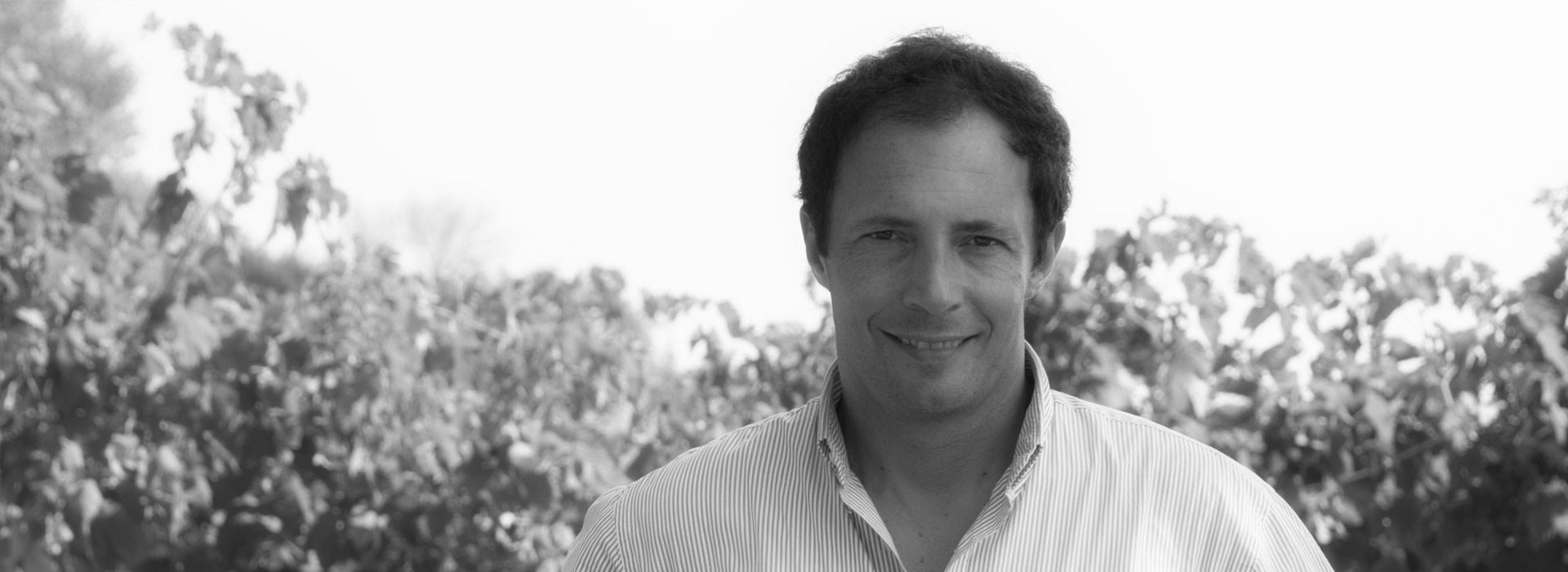 Lorenzo Marotti Campi