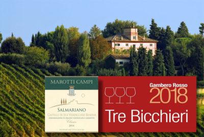 Marotti-Campi-Salmariano-2014-Tre-Bicchieri-Gambero-Rosso