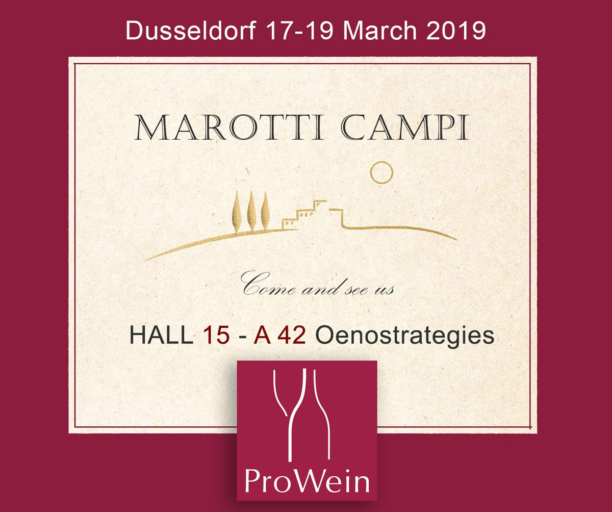 Dusseldorf-2019 Marotti Campi